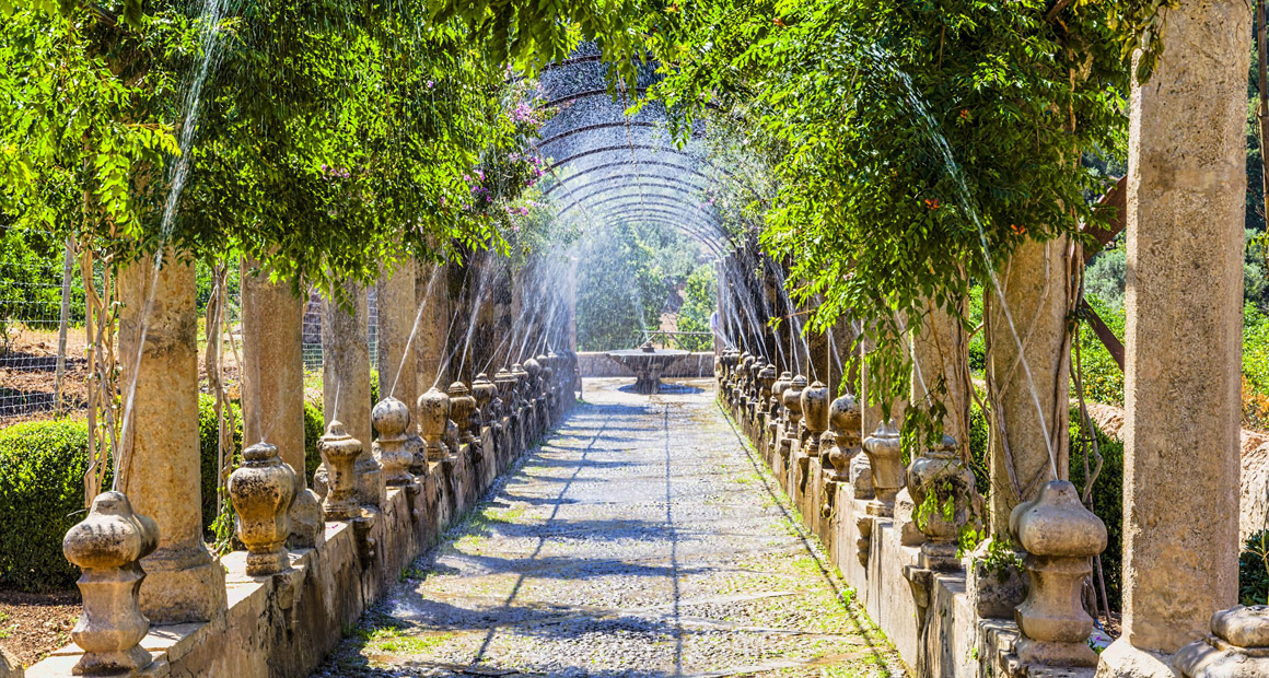 Alfabias trädgårdar